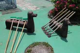 敷地内の動物たち