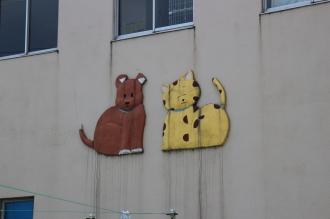 川崎市動物愛護センターの犬・猫