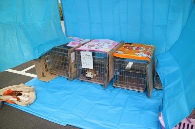 ペットの避難所モデルルーム