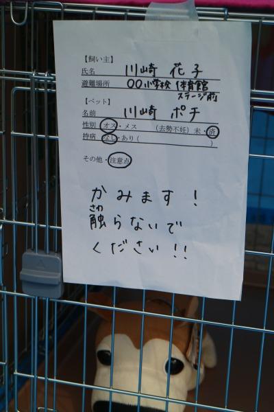 ペット避難所の掲示サンプル