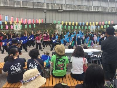 「こすぎ舞祭り」全参加団体による「総踊り」