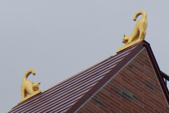三角屋根の猫