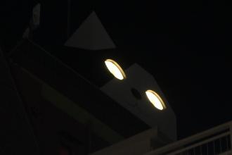 夜間に光る巨大猫の目