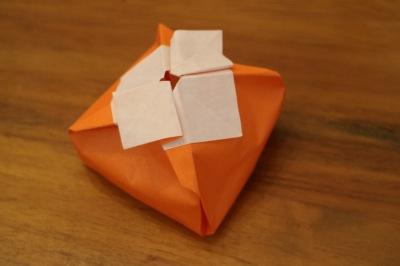 「禅寺丸の柿色」