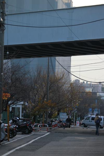 「今井上橋」以南の駐輪場