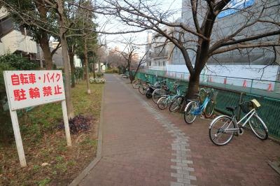 今井上橋付近の放置自転車