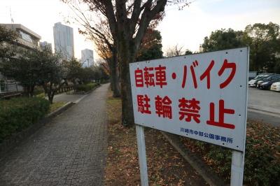松尾橋付近の遊歩道