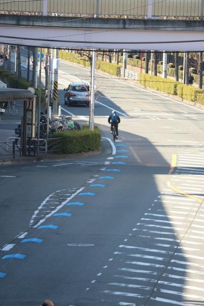 富士通川崎工場前で途絶える自転車ナビマーク
