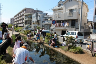 江川せせらぎ遊歩道のザリガニ釣りゾーン