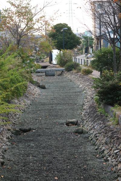 水が抜かれた江川せせらぎ遊歩道