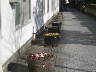 中原区役所前の歩道