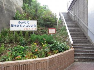 上丸子跨線橋沿いの花壇