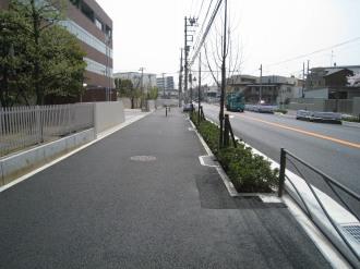 整備された歩道と植栽