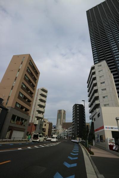 向かいの「PrimaSK武蔵小杉」と2棟の新築ビル