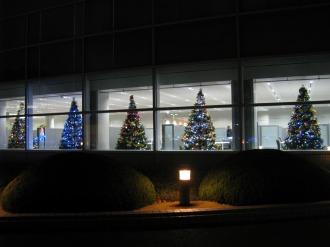 本部ビル1階のクリスマスツリー