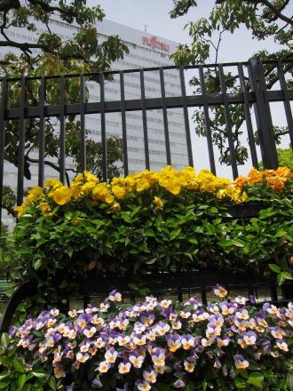 富士通川崎工場の花