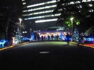 前庭のクリスマスイルミネーション