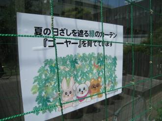 「緑のカーテン」の掲示