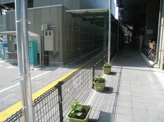 JR武蔵小杉駅自転車第4駐車場のプランター