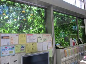 区役所内から見た「緑のカーテン」