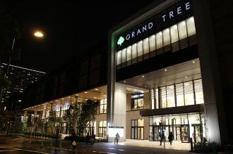 夜のグランツリー武蔵小杉