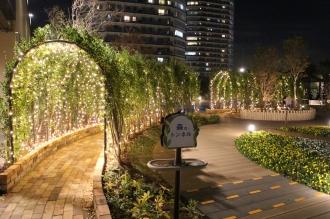 「森のトンネル」のイルミネーション