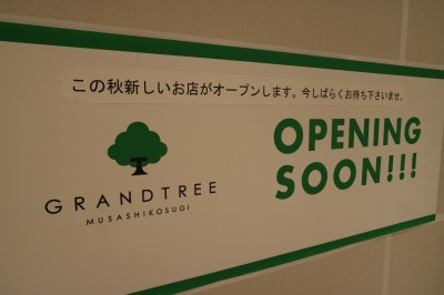 グランツリー武蔵小杉の空き区画