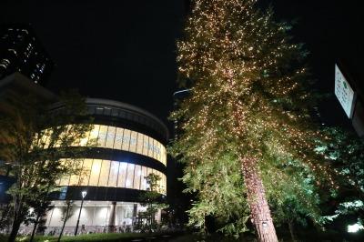 グランツリー武蔵小杉のクリスマスイルミネーション