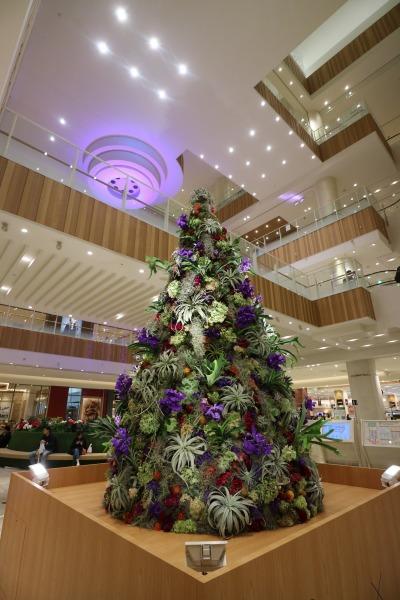 グランツリー武蔵小杉のクリスマスツリー