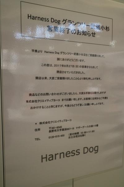 「ハーネスドッグ」閉店のお知らせ