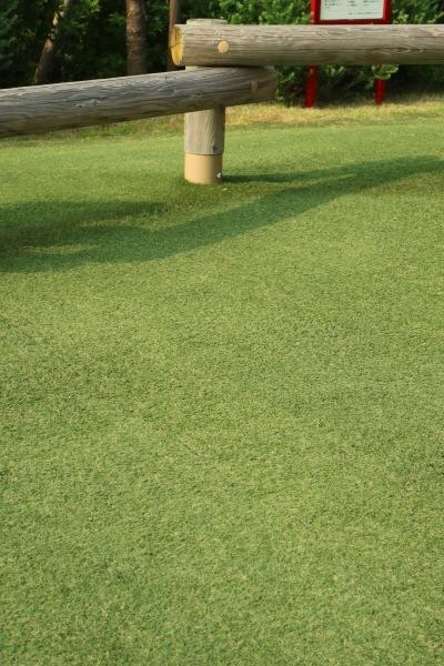 ぐらんぐりんガーデンの芝