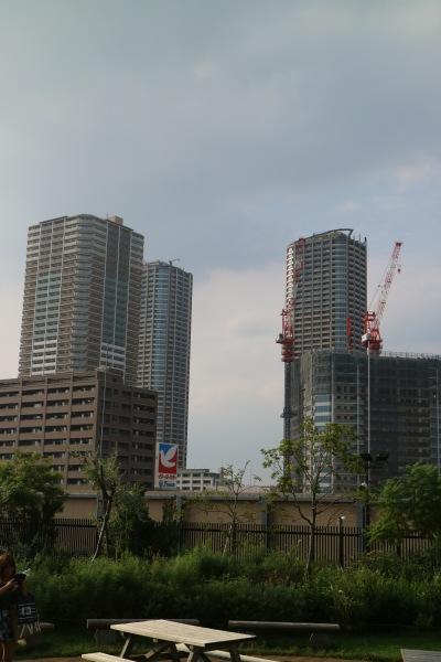 ぐらんぐりんガーデンから見える武蔵小杉のタワーマンション
