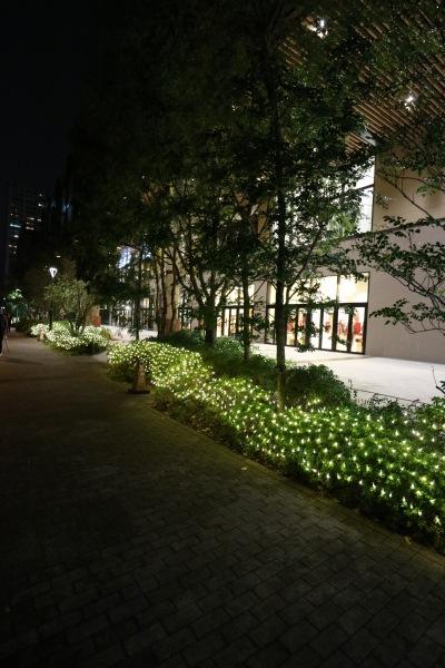グランツリー武蔵小杉のイルミネーション