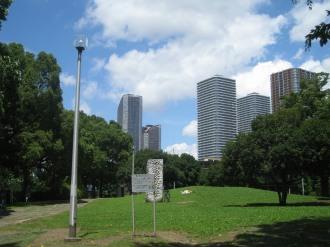 中原平和公園から見る武蔵小杉のタワーマンション