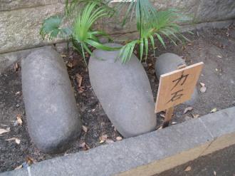 丸子山王日枝神社の「力石」