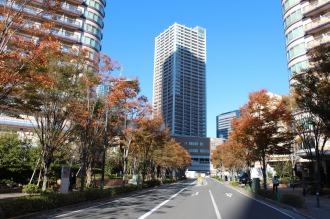 路線バスが通る都市計画道路 武蔵小杉駅南口線