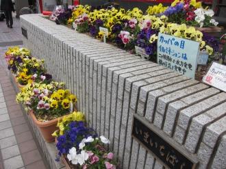 河童ねぶたが設置されている今市橋の花壇