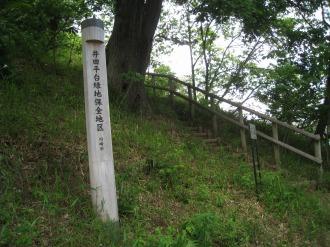 急勾配と「井田平台緑地保全地区」の表示