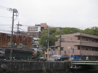 矢上川付近から、井田病院を見上げて