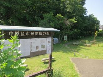 井田山 中原区市民健康の森