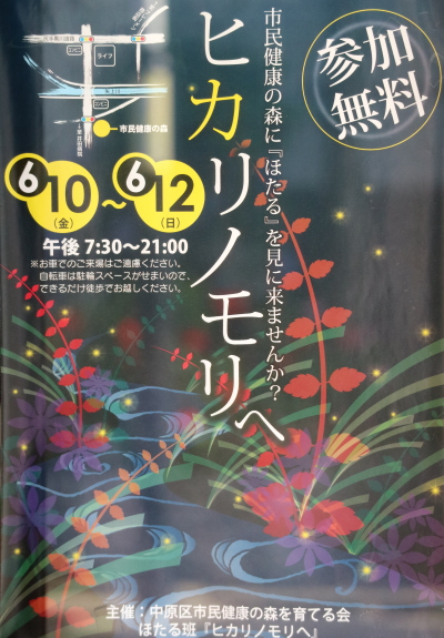 ホタル観賞イベント「ヒカリノモリへ」