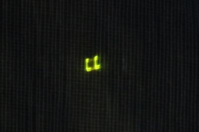 発光するホタル