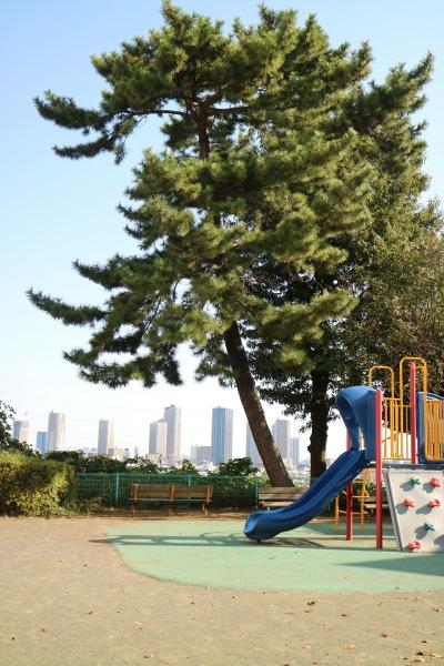 公園の遊具と武蔵小杉のタワーマンション
