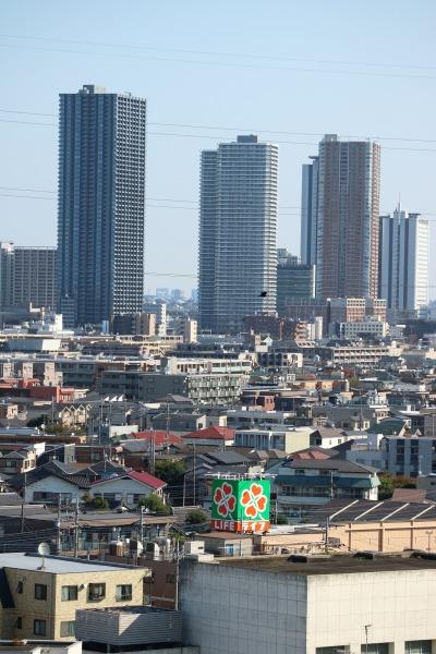 シティタワー武蔵小杉(左側)