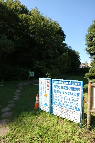 井田山の「中原区市民健康の森」の入口
