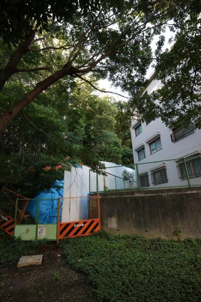 井田山の斜面と近接する住宅