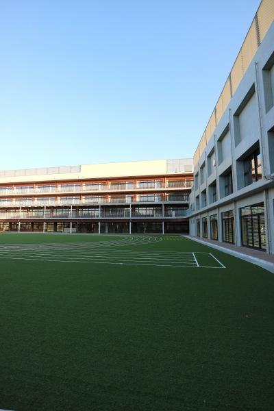 完成した小杉小学校
