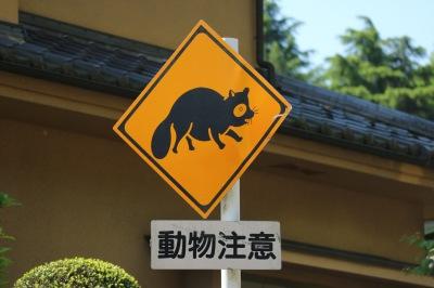 「動物注意」