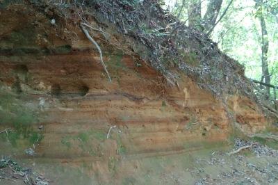 「枡形山」の地層
