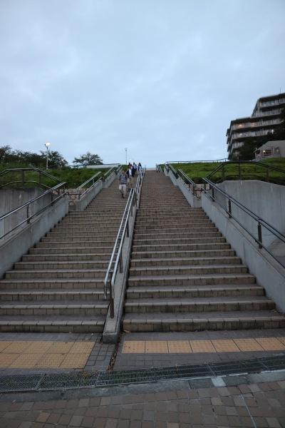 北山田駅近くから横浜国際プールを見上げて